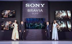 Sony液晶电视称霸台湾 群创、友达受惠