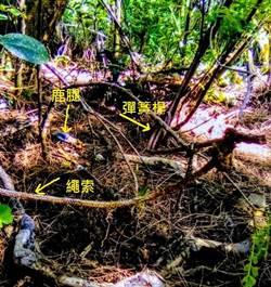 社頂風聲發現鹿骨骸 居民不捨梅花鹿疑遭獵殺盼墾管處協助