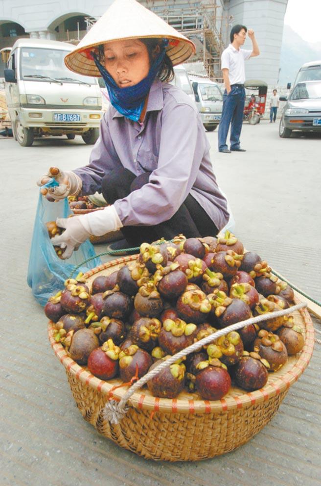 農委會擬有條件開放輸入泰國產山竹鮮果實,最快7月公告開放進口。(本報資料照片)