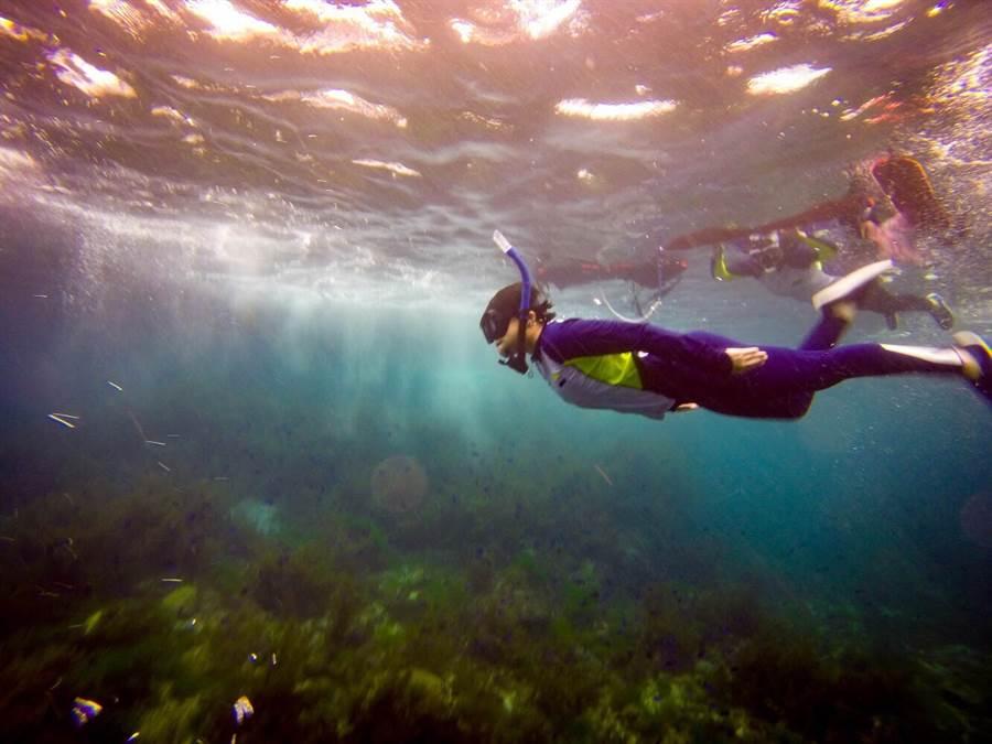 熱愛自由潛水的王怡婷,每周休假都泡在水中世界。(圖/【山西福彩】房屋 提供)
