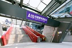旺house》青埔特區商場連發!A19環球購物中心打造最強生活圈
