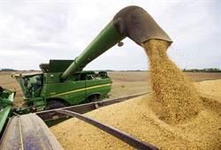 貿易戰鬧人命 美農民:自殺率創新高