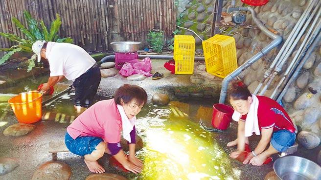 台中市南屯區寶山里的洗衣窟,因常年有泉水湧出,附近居民常來此洗衣服、洗菜。(黃國峰翻攝)