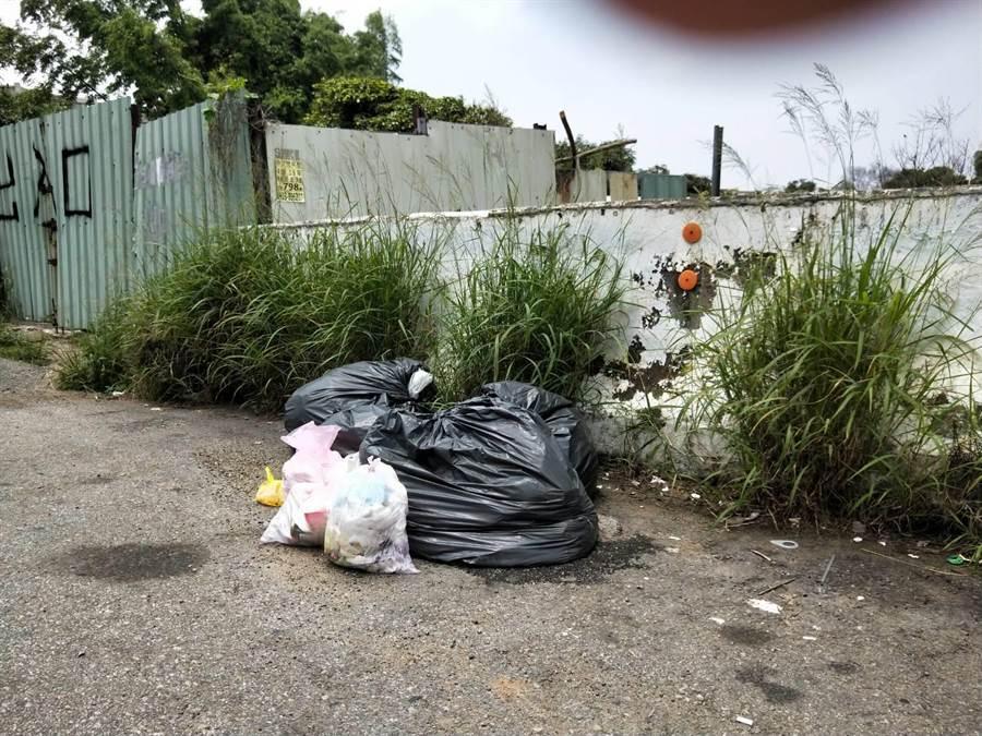 沙鹿區北勢東路上也遭棄置大小包垃圾,民眾公德心有待提升。(陳淑娥攝)