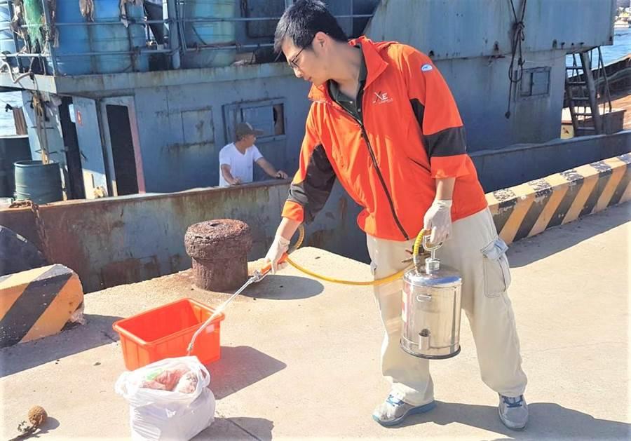 澎湖海巡隊查獲越界大陸籍油料補給船夾帶豬肉,防疫人員緊急善後銷毀。(陳可文攝)