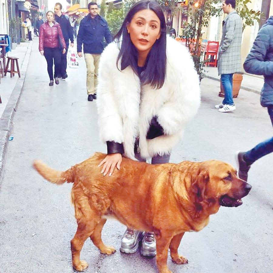 艾怡良很疼愛毛小孩,日前去土耳其旅遊與當地流浪狗合影留念。(取材自臉書)