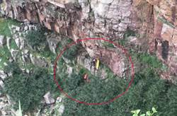 貢寮2攀岩客墜崖昏迷 驚險搶救畫面曝光