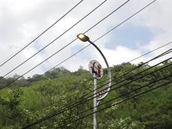 路燈白天大亮 民眾擔心浪費電