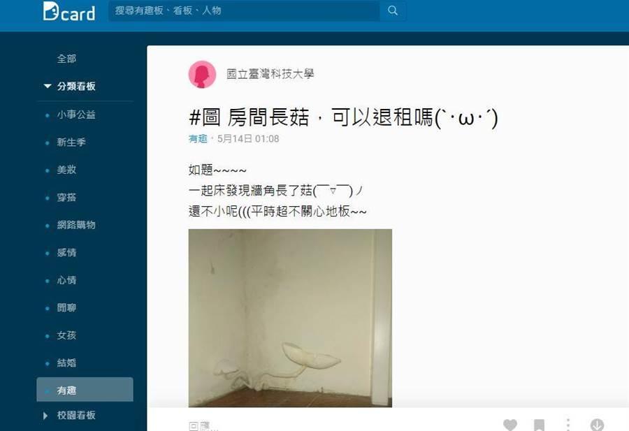 網友發文問,牆角冒出神秘白菇可否退租。(翻攝DCARD)