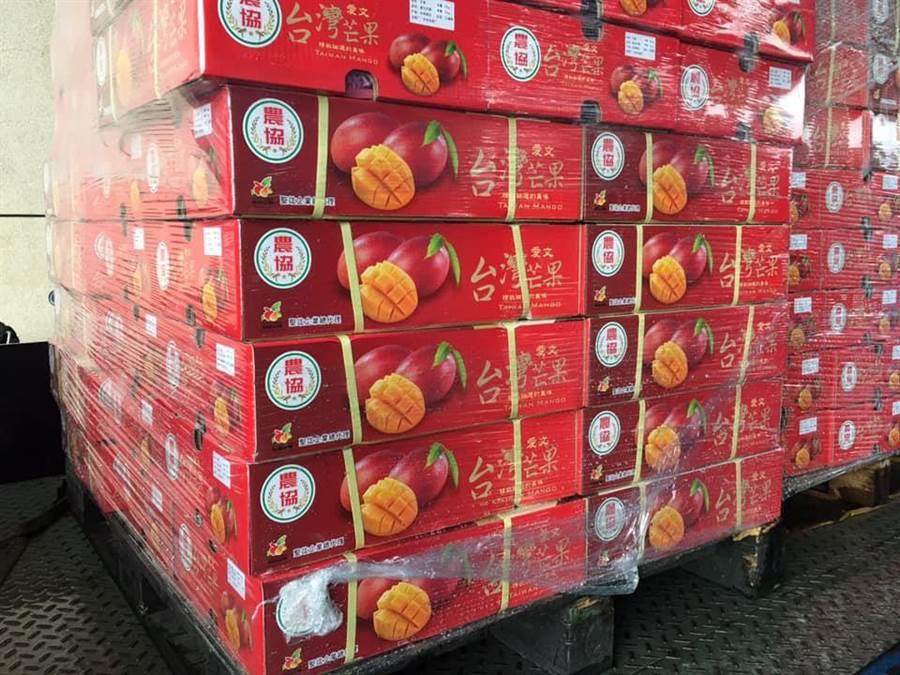 高雄木瓜、紅龍果、芭樂、小玉西瓜昨飄洋香港搶市場。(翻攝吳芳銘臉書)