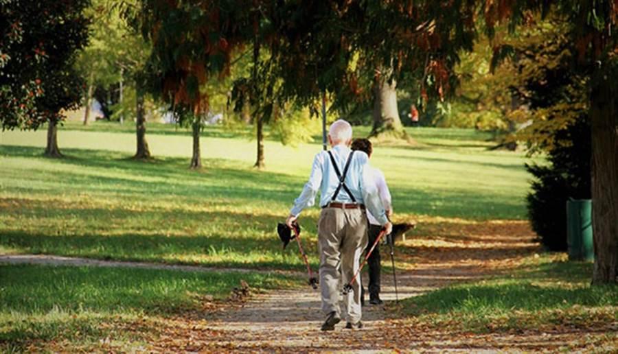世界衛生組織首度公佈「減少失智症風險」的建議做法,其中包括多運動。(圖/pixabay)