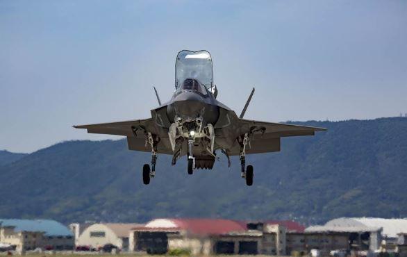 鐵鳥怕真鳥 美F35遭鳥擊損失200萬美元