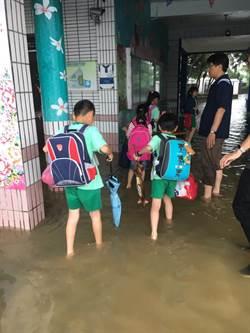 大雨 桃園沿海大坡、笨港國小停課
