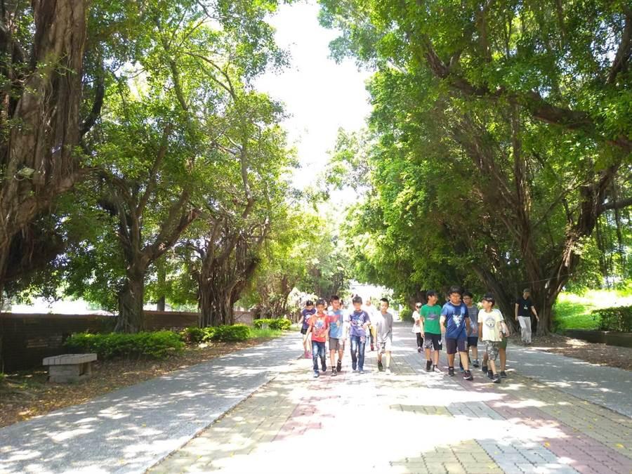 高雄巿永清國小師生每天必定要走的綠色隧道,天團五月天MV也曾經取景。(曹明正攝)