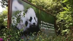 成都熊貓亞洲美食節的新視界