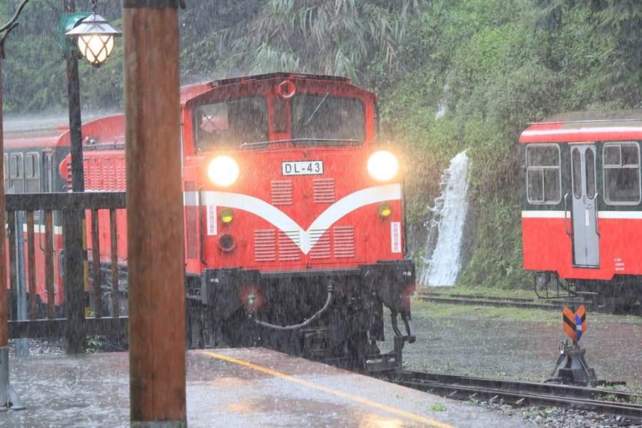 阿里山大雨,林務局宣布森林鐵路停駛。(廖素慧翻攝)