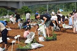 「世界都市農夫日」將到來!親子淡水開心種菜品樂活