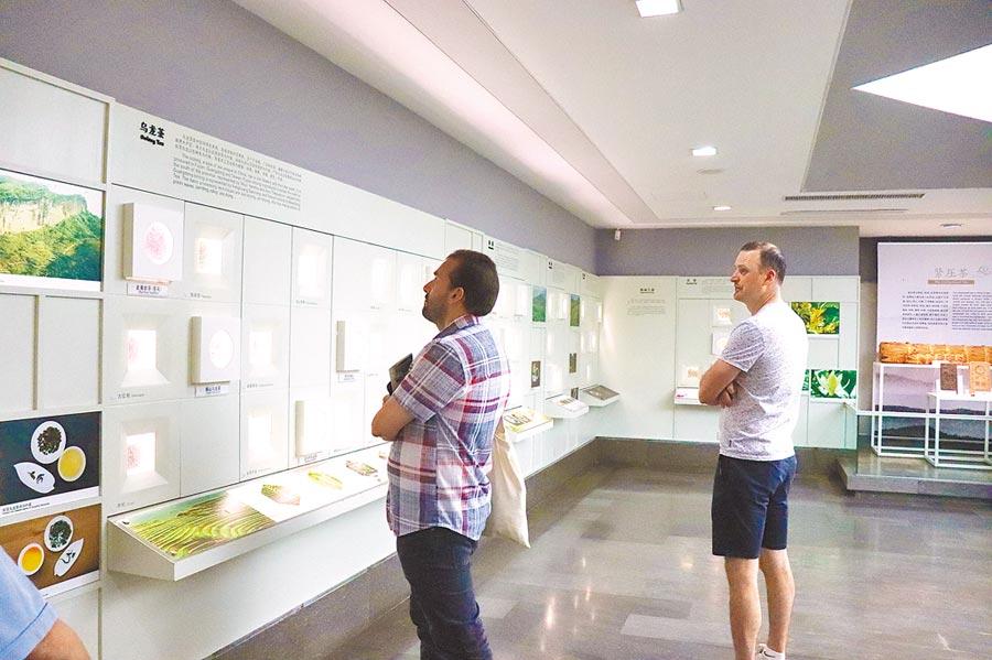 外國遊客也前來中國茶葉博物館「取經」。(記者呂佳蓉攝)