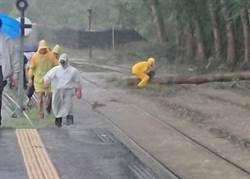 大雨傾洩路樹倒 台鐵集集線搶修後通車