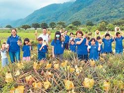 買鳳梨 許善導孩子一個未來