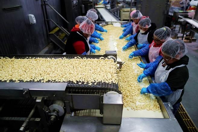 克里斯多福農場(Christopher Ranch)的大蒜生產線。(圖/路透社)