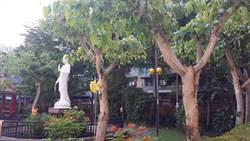 智光商工佛教辦學 以菩提樹為校樹