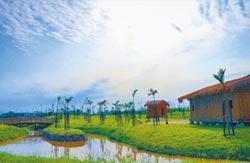 新北考古公園 25日開放