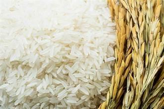 這米長在海裡 傳他吃不到砍廚師頭