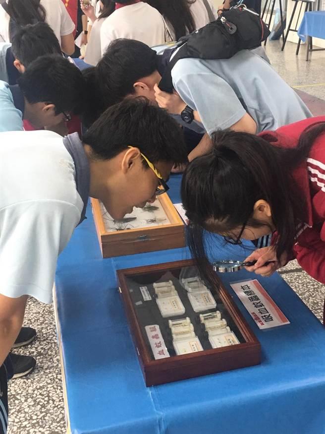弘文中學學生觀察「吸血紋蟲」標本。(王文吉攝)