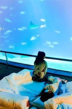 网红卡到阴牙套离奇消失一见三太子祂飙9个字- 娱乐 - 中时电子报 Chinatimes.com -20190524000054