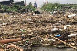伸港海域全遭垃圾淹沒 議員憂蚵農生路