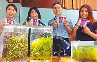 海葡萄萃取液 開發保養保健品
