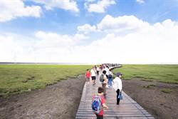 高美溼地紅到國外去 中市府辦生態導覽之旅
