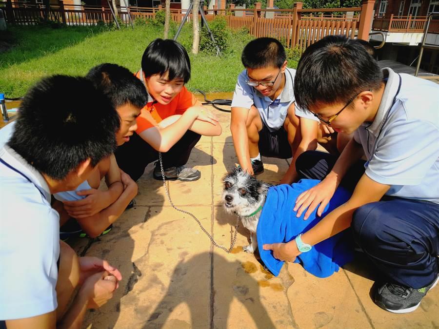 生命教育课程中,老师带领学生替校犬沐浴、整理毛发等,互相关怀建立自信心。