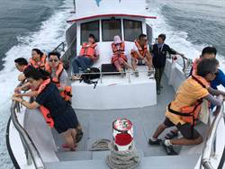 黑暗水手出海「聽」鯨 200海豚相伴遊