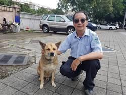 流浪犬找頭路  擔北新國中校犬14年