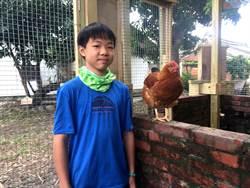 學童體驗畜牧樂 「摘星雞」成最佳學習夥伴