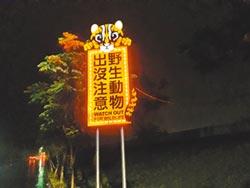 議員拚石虎法令 盼徐耀昌牽線