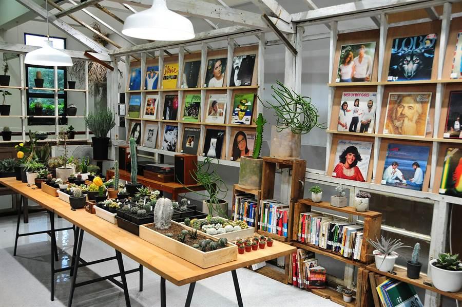 靜宜「蓋夏圖書館」即日起至6月21日,推出「森之時光」創意特色展;結合館藏黑膠唱片與多肉植物等。(陳世宗攝)