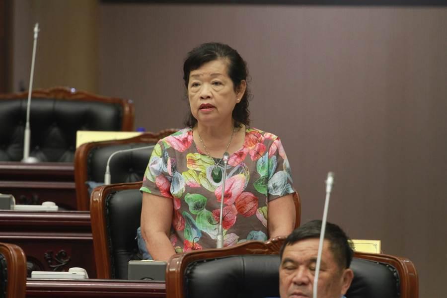 縣議員張懷文要求縣府針對南漂異鄉遊子,也要推出返鄉專車。(范振和攝)