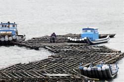 蚵棚阻絕航道  35年漢光演習從沒操練過的科目