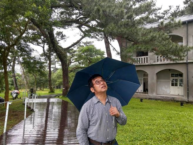花蓮市松園別館老松遭松材線蟲侵害,樹醫師傅春旭仔細觀察診斷。(范振和攝)