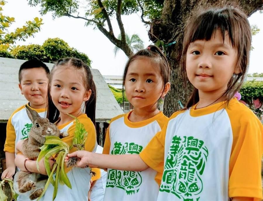 興華國小從附設幼兒園到國小各年級學童,每天都要輪流來抱抱兔兔們,成為偏遠迷你小學生命教育最佳教材。(謝瓊雲攝)