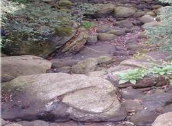保障山區用水 縣府:向中央建議伏流水設置