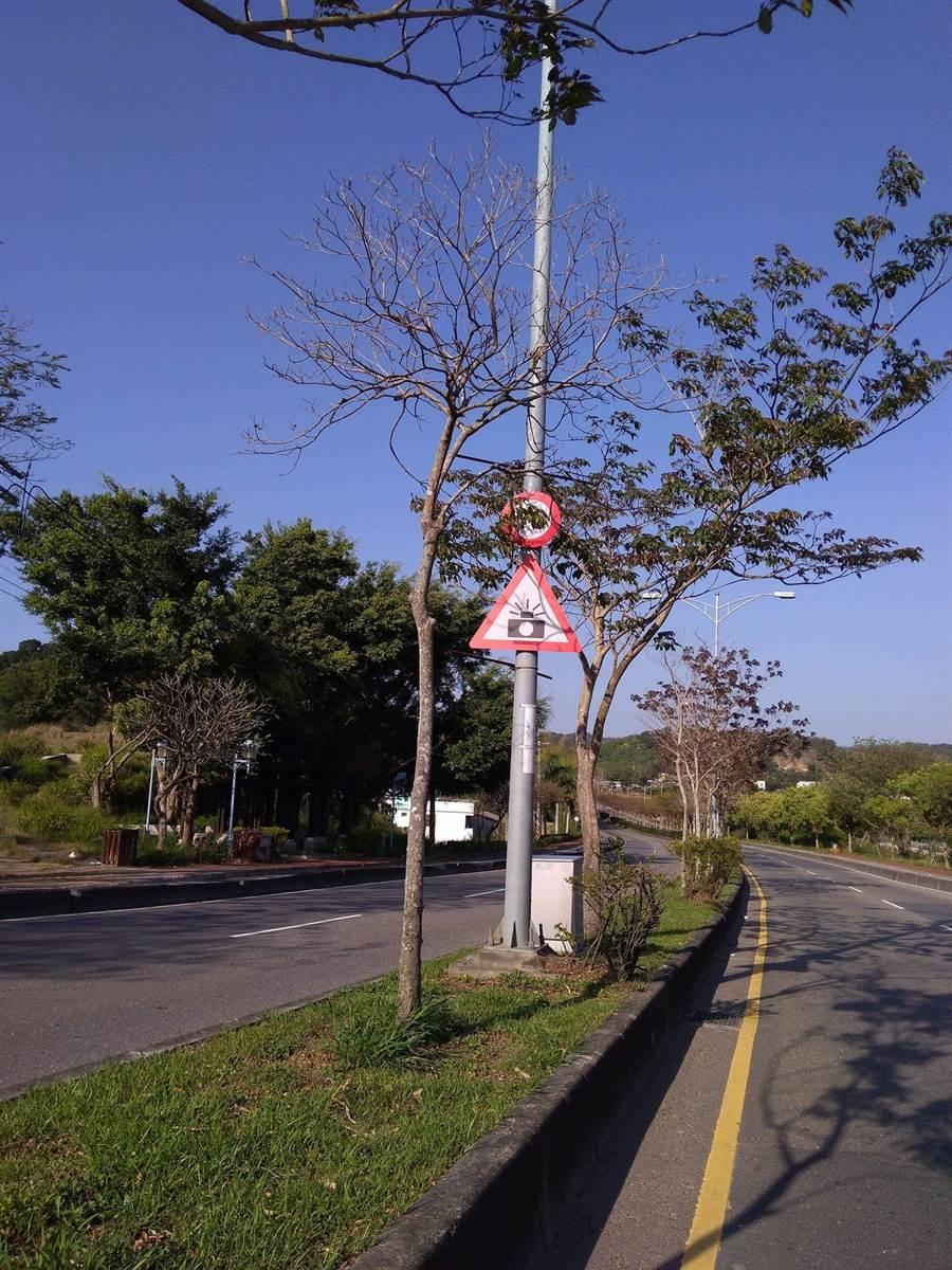 貫穿整個花壇鄉的台74甲線東外環道路,南北雙向經常都有超速取締,讓不少駕駛人因超速吃罰單;但也因取締警示牌設置在中央安全島上,經常被路樹的枝幹、樹葉遮擋。(謝瓊雲翻攝)
