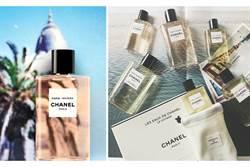 去年夏天小香賣到翻的LES EAUX淡香水系列終於等到全新香味上架了!