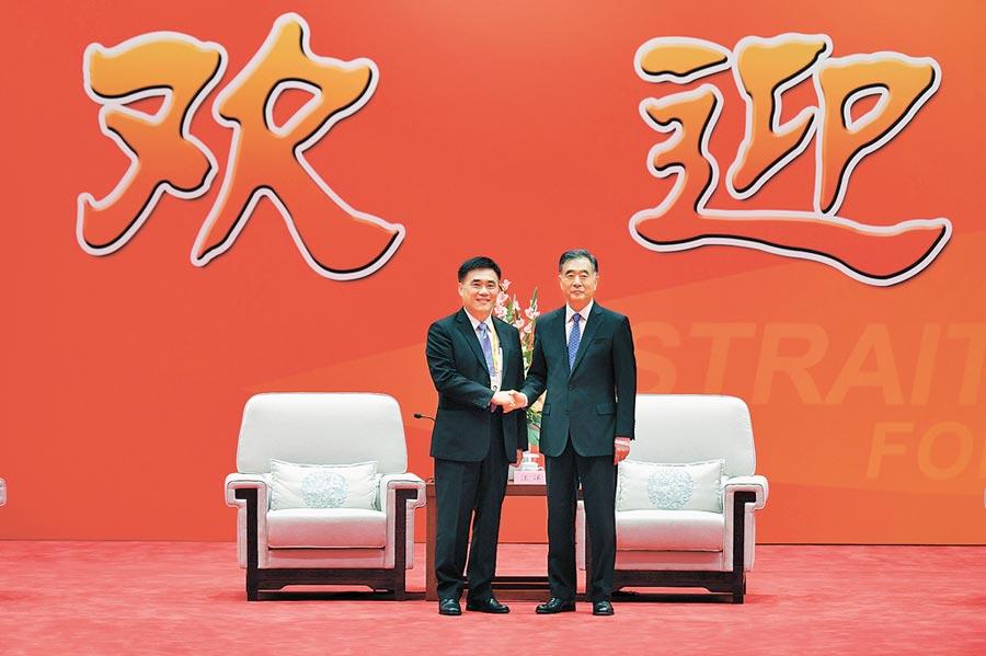 2018年6月6日,中共中央政治局常委、全國政協主席汪洋(右)在廈門會見前來參加第十屆海峽論壇的中國國民黨副主席郝龍斌。(中新社)
