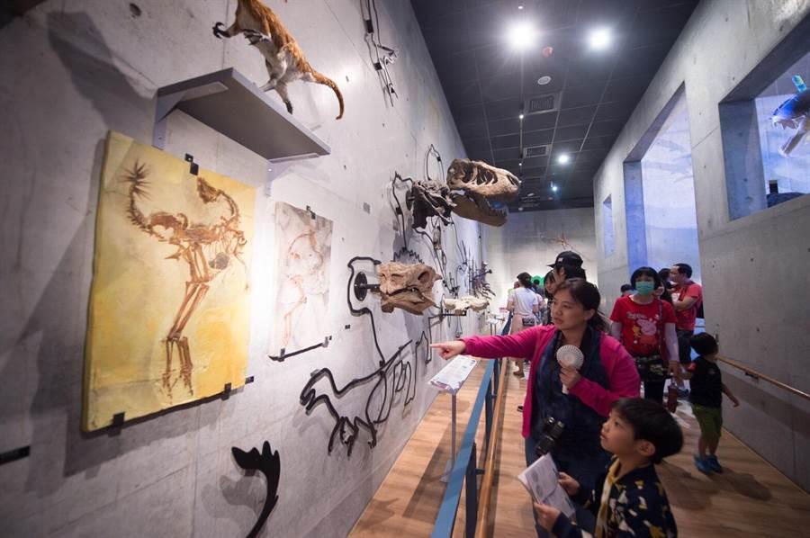 5月12日開幕的台南左鎮化石園區,開幕3周已吸引逾8萬多人次入園參觀,預計本周即將突破10萬人次大關。。(劉秀芬翻攝)
