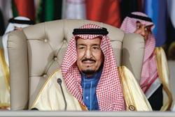 沙國推出新綠卡