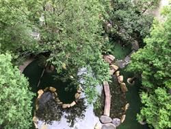 「惠宇五十七間堂」社區共享 庭園開放...鍋碗瓢盆都可出借